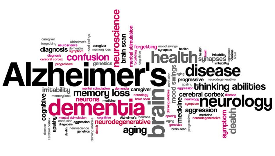 What are the causes and symptoms of Alzheimer's disease?
