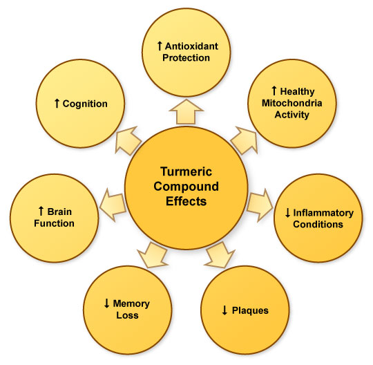 Figure IV.10: Overall Benefits of Turmeric Compounds in Alzheimer's Disease
