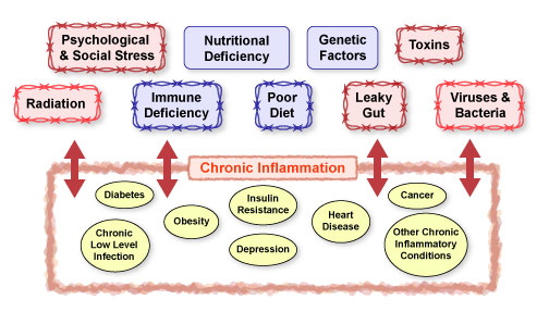 Figure IV.15: Factors that Contribute to Chronic Inflammatory Conditions